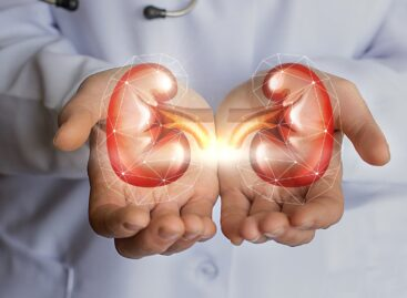 What is Kidney Failure? Is it treatable?