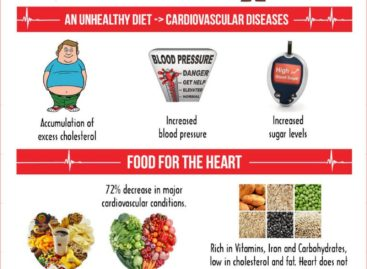 The Significance of Diet in Heart Diseases – Infographic