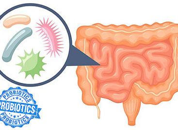 Understanding probiotics and their use