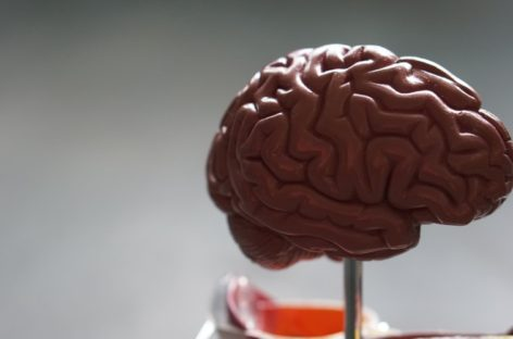 Concussions can be serious, seek immediate help